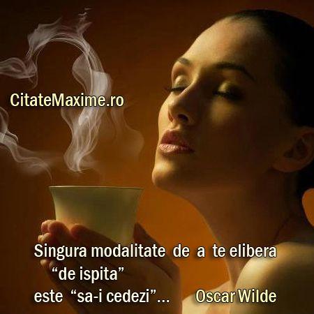 """""""Singura modalitate de a te elibera """"de ispita"""" este """"sa-i cedezi""""..."""" #CitatImagine de Oscar Wilde Iti place acest #citat? ♥Distribuie♥ mai departe catre prietenii tai. #CitateImagini: #Dorinte #OscarWilde #romania #quotes Vezi mai multe #citate pe http://citatemaxime.ro/"""