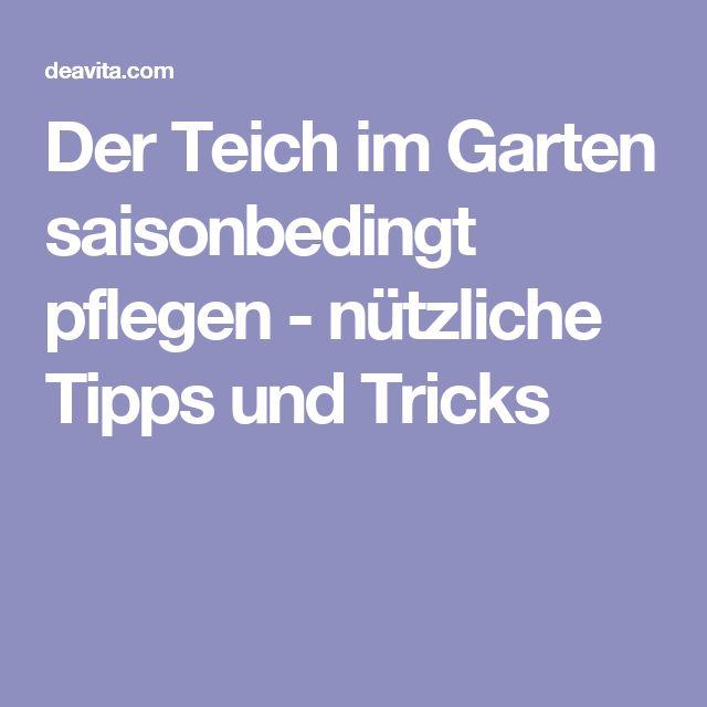 Las 25 Mejores Ideas Sobre Teichpflege En Pinterest | Vorgarten ... Garten Im November Tipps Pflege