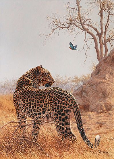 Poised perfection by Peter Stewart Oil ~ 90cm x 60cm