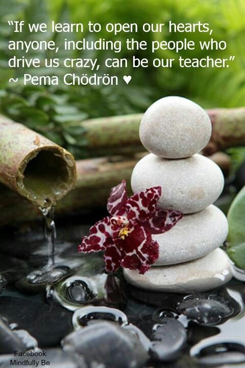 If we learn to open our hearts, anyone, including people who drive us crazy, can be our teacher.
