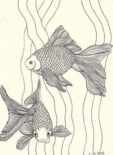 goldfish linework by MagaMerlina, via Flickr