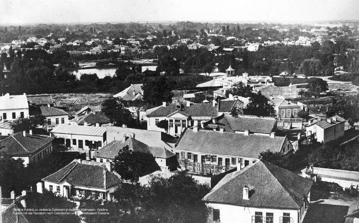 Grădina Publică cu vedere la Cotroceni-1856