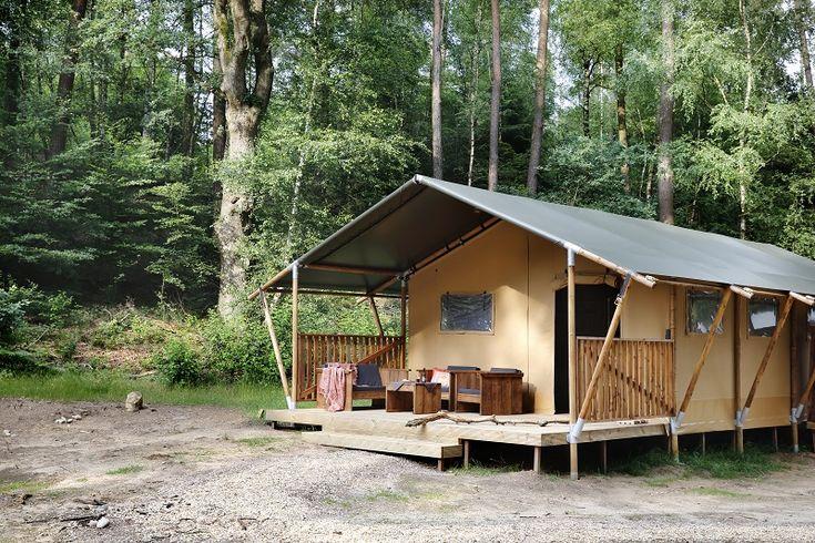 Bijzonder overnachten in een Lodgetent in het bos