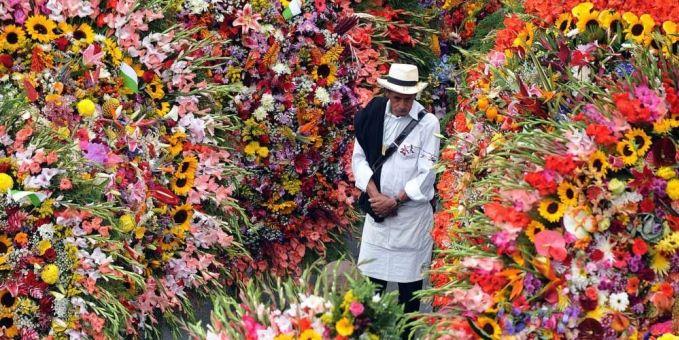 Flores de Exportacion
