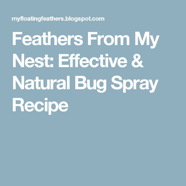 Feathers From My Nest: Effective & Natural Bug Spray Recipe