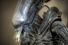 Spoiler alert galore - collection of musings about Prometheus from Reddit, via Mashable.