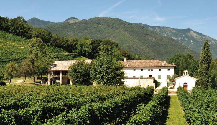 I Vignaioli Indipendenti Fivi hanno scelto: L' Azienda Vinicola Luigi Gregoletto S.a.s è la migliore di quest'anno! Non perdetevi la premiazione a Expo Piacenza! #chinonbeveincompagnia
