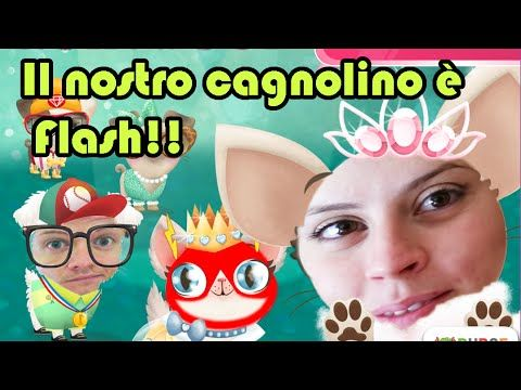 Miss Hollywood - Il nostro cane è Flash! - Gameplay Android - (Salvo Pim...