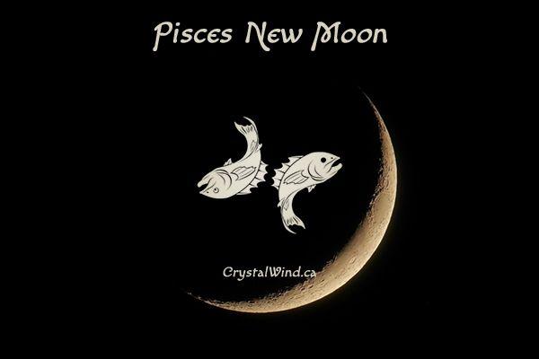 New Moon Update 3-17-18