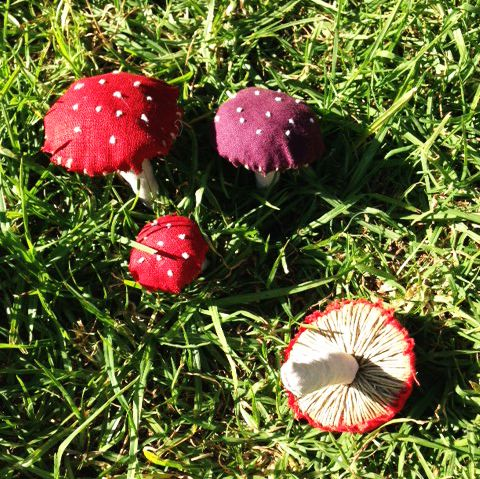 DIY: Mushroom season
