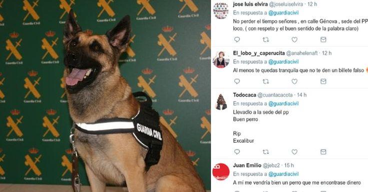 Los simpáticos mensajes de la gente a Floki, el perro detector de dinero presentado hoy por la Guardia Civil #guardiacivil #policia #perro #perros #mascotas #animales #humor