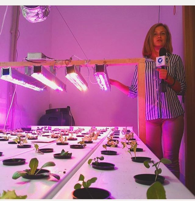 Have you ever heard about hydroponics? What about fully automated hydroponic systems?  Follow @ecoconltd for more inspiring posts!  -  Want to be featured? Use the hashtag #ecoconftme :)  @over_grower