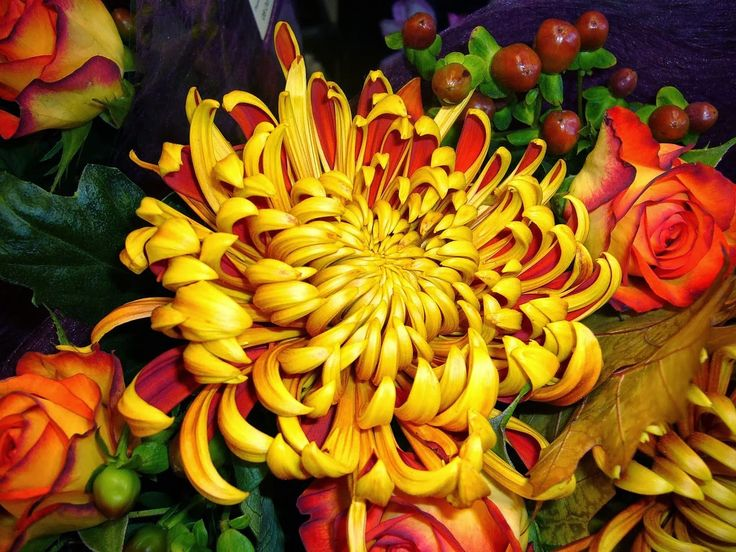 Lovely Fall bouquet and a great post on Language. Read more