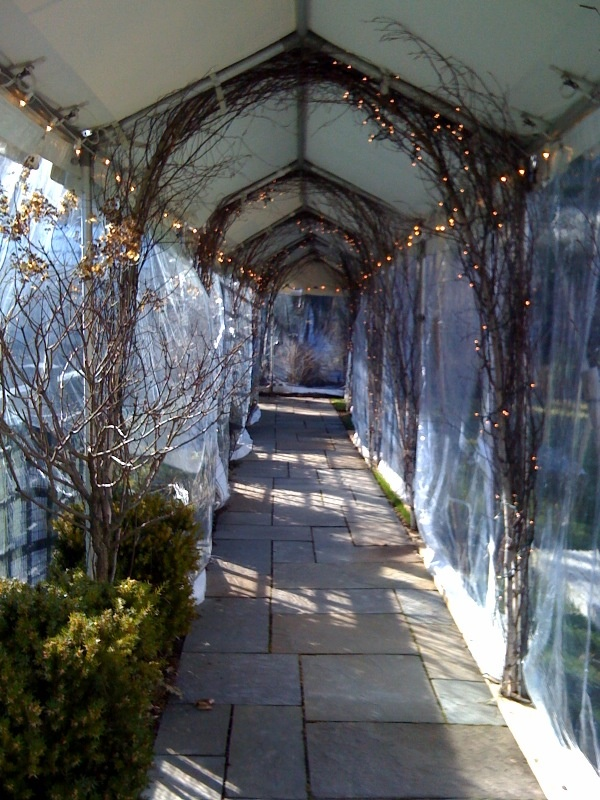 Marquee Walkway With Clear Sidewalls Accessories To Rent