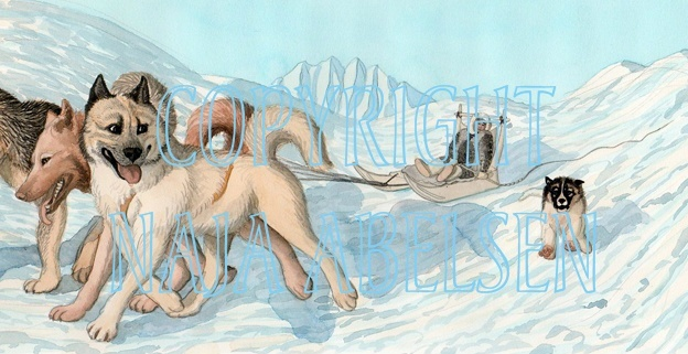 """Illustration from a book """"Slædehundenes Suk"""" about the little puppy, seeking an answer for the meaning of sighing! Here he runs up his father to ask him. Water Colour by Naja Abelsen. Available as A3-photoprint 400 DKK / 54 Euro. ANIMAL MOTIFS - www.123hjemmeside.dk/NajaAbelsen"""