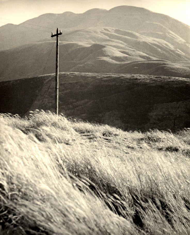 c 1935 ,Kansuke Yamamoto, ©Toshio Yamamoto.