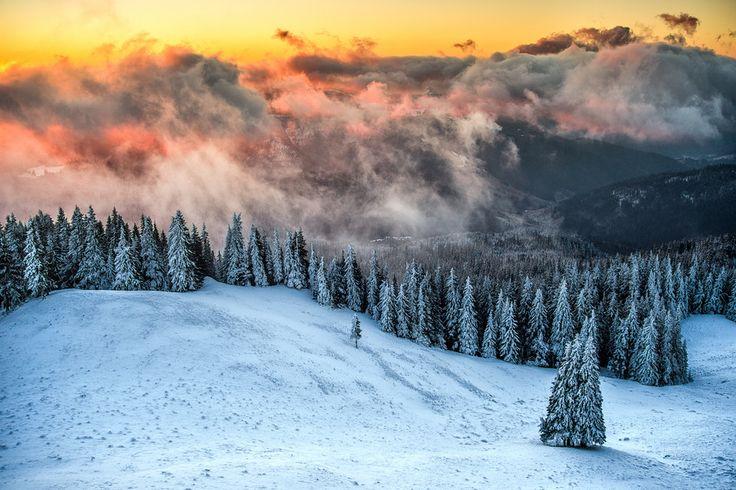 Winter  in Bucovina by Dumitrescu Catalin  www.romaniasfriends.com