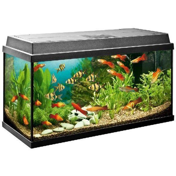 Juwel Primo 110 Led Black Aquarium Aquarium Modern Led Lighting Led