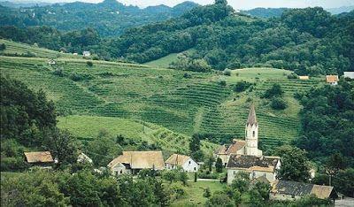 VINI & VITIGNI: I GRANDI BIANCHI DI SLOVENIA