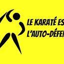 Est-ce que vous avez déjà suivi un cours spécifique d'auto-défense ?  http://karate-blog.net/karate-self-defense/