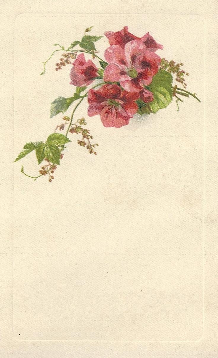 88 best vintage images blank frames images on pinterest free little birdie blessings blank pink floral frame m4hsunfo Images