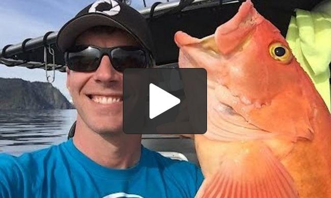 Πήγαν για ψάρεμα στην Αλάσκα: Θα τα χάσετε με τις ψαρούκλες που έπιασαν Crazynews.gr