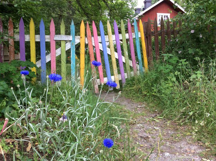 En grind i Nibble vid Ytterjärna. Blir så GLAD av dessa färger! www.olgamagnusson.se