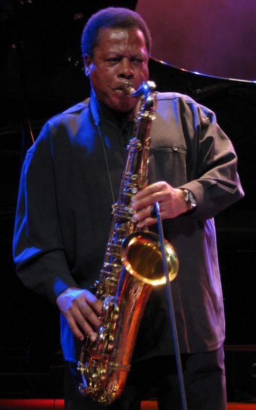 Wayne Shorter @ All About Jazz