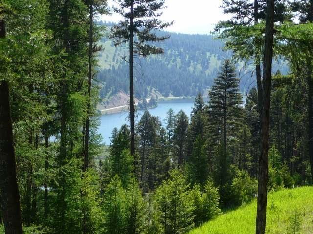 Splenderosa: Early Morning Walk at Seeley Lake, Montana.