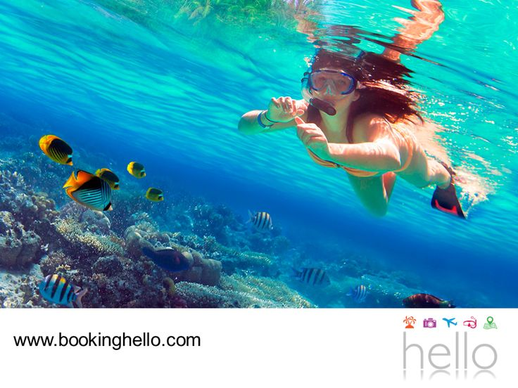 LGBT ALL INCLUSIVE AL CARIBE. Al adquirir tu pack all inclusive de Booking Hello al Caribe dominicano, tus vacaciones estarán llenas de relajación y descanso en los resorts Catalonia, donde podrás disfrutar de los mejores servicios y si buscas un poco de diversión, te recomendamos visitar Isla Saona. Una reserva marítima y terrestre sorprendente con un variado ecosistema y uno de los mejores sitios para aventurarte a practicar snorkeling con tu pareja. #LGBTsorprendeloalcaribe