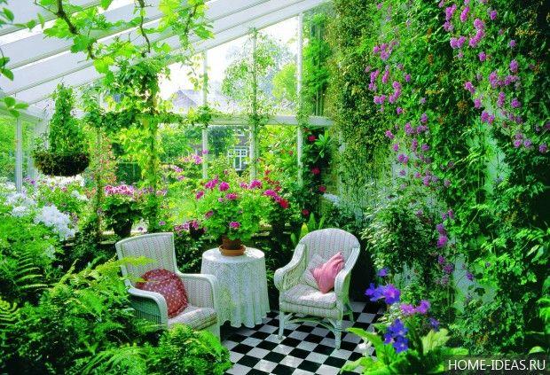 Дизайн и оформление зимнего сада в частном доме своими руками: фото и видео