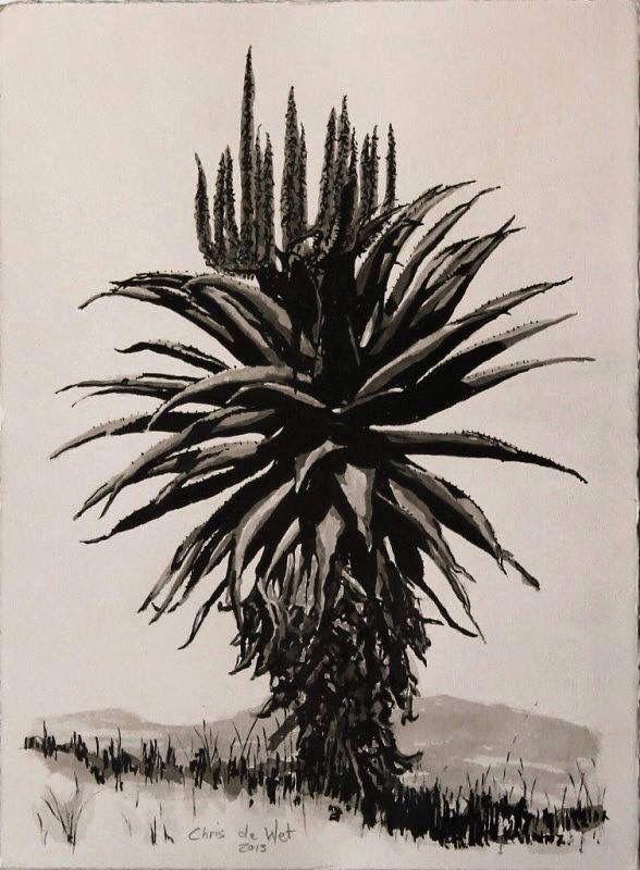 Aloe Ink on Fabriano