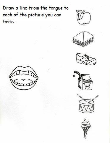 5 senses worksheet for kids (2) | Crafts and Worksheets for Preschool,Toddler and Kindergarten