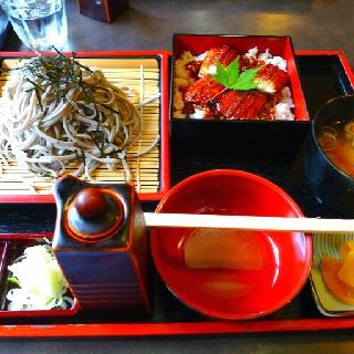 Soba and eel bowl