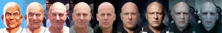 Is it just me or do all bald white men look alike?