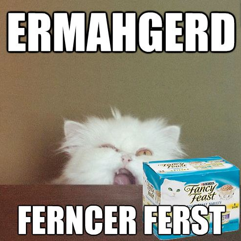 Anything that starts with Ermahgerd makes me laugh for at least 15 mins :): Cats, Animals, Giggle, Fancy Feast, Ermahgerd, Funny, Ferncer Ferst, Humor