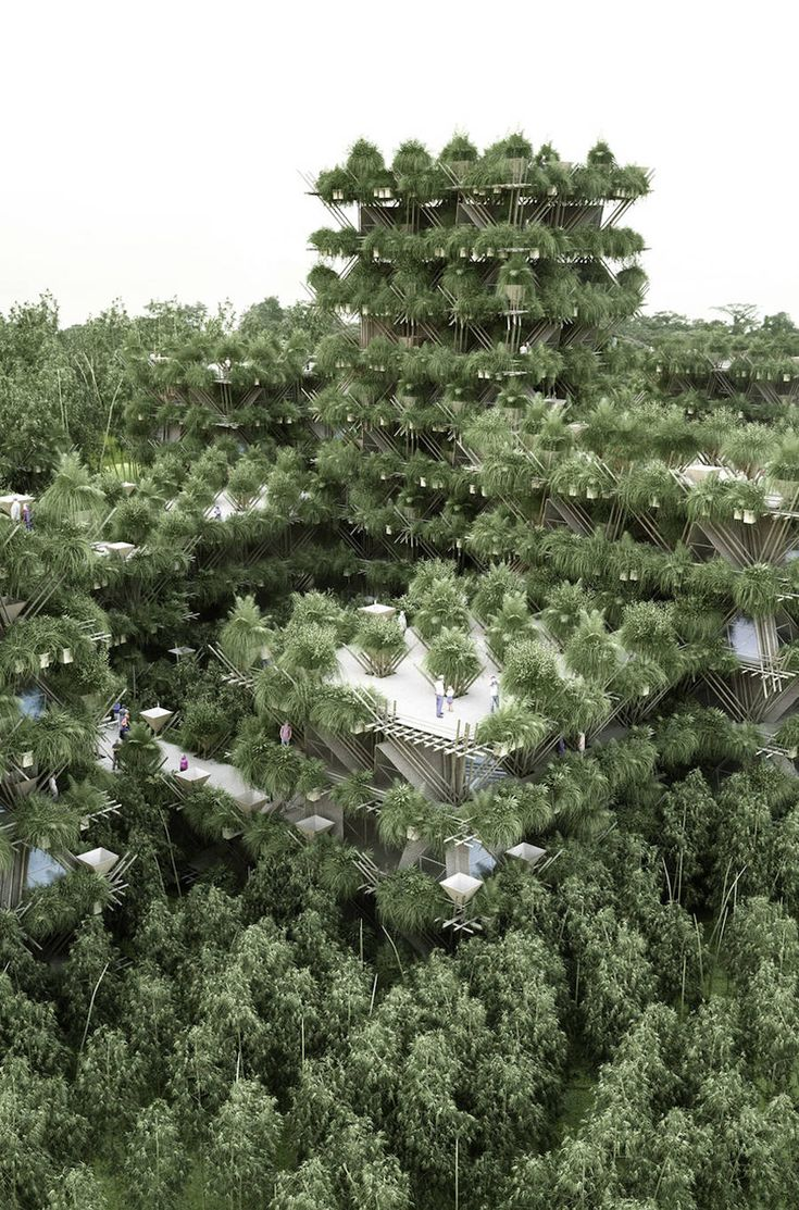 The Future City of Bamboos