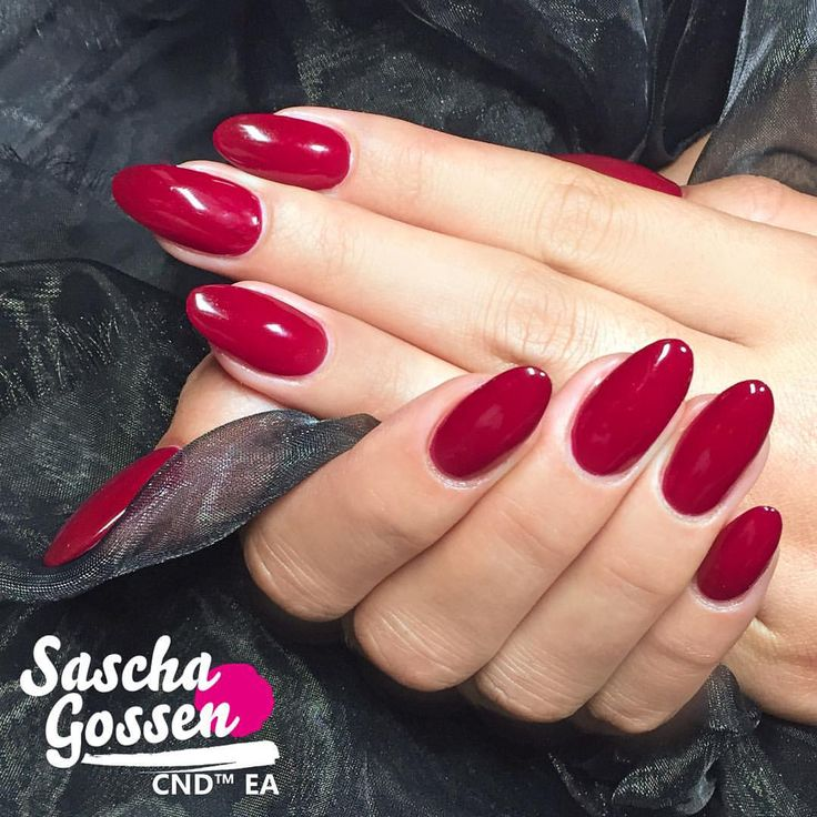 CND™ SHELLAC™ Rouge Rite of the Contradiction collection.