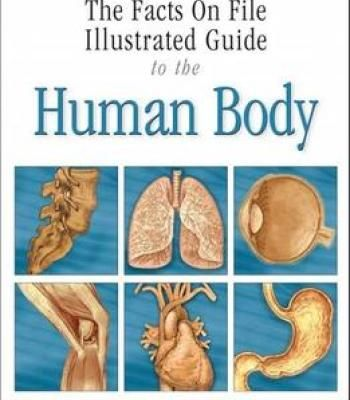 Illustrated Guide To The Human Body: The Respiratory System PDF