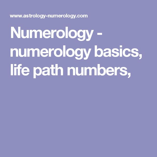 Lucky car number calculator numerology picture 3