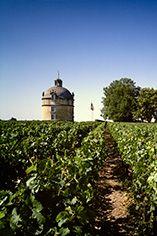 Explore the Wine range of Chateau Latour - Berry Bros. & Rudd