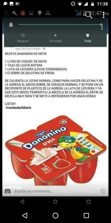 Dqninino Casero Kefir Kéfir Danonino Yogurt