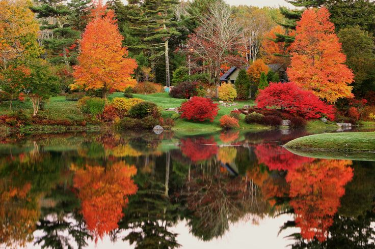 Asticou Gardens Bar Harbor Maine Pinterest
