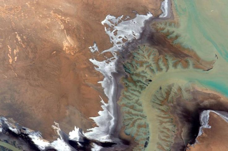 July 17, 2015: Gorgeous Earth tones of sediment-laden rivers rimmed with bright reflective evaporate deposits. Image credit: NASA/Scott Kelly