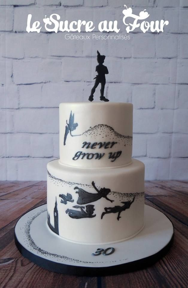 Peter pan cake, all hand painted
