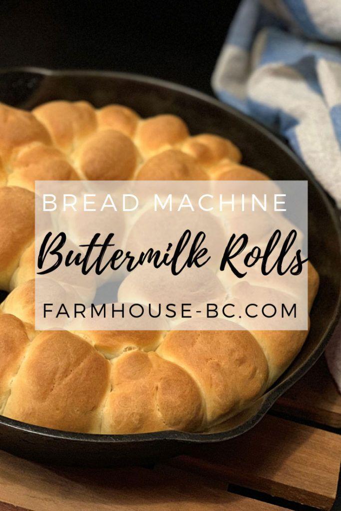 Easy Buttermilk Wheat Bread Machine Rolls Farmhouse Basic Collection Recipe Bread Machine Rolls Bread Machine Wheat Bread Recipe Bread