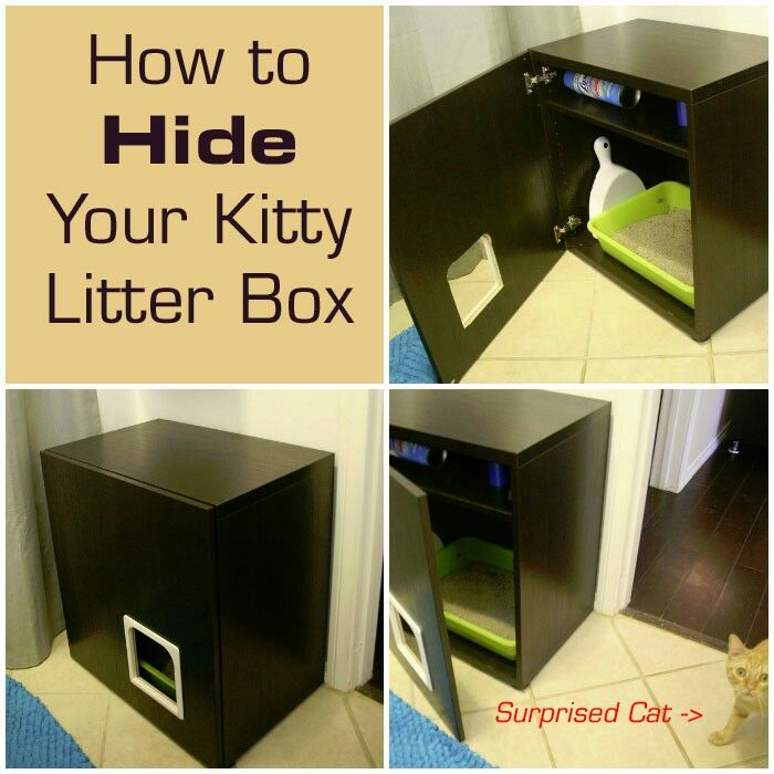 Perfect for kitty privacy kitty space ideas pinterest kitty - Litter boxes for small spaces paint ...