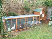 Keeping Chickens - Where to site your Chicken Coop in the Garden   Down the Lane