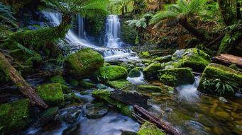 Horseshoe Falls, Tasmania  Instagram-1666 - Discover Tasmania