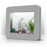 Aquarium i kinda dig this mini tank.